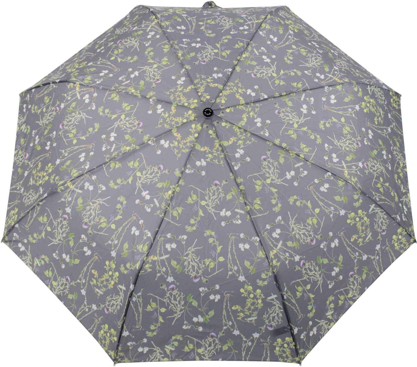 Parapluie pliants Femme Multicolore beige 101 cm Pierre Cardin