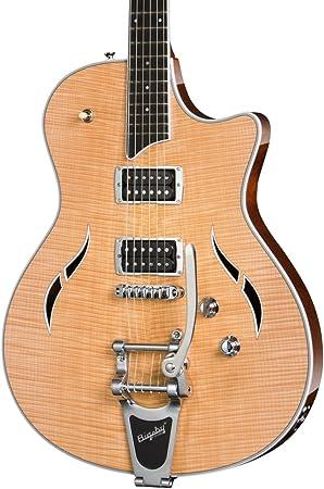 Taylor T3/B semi-hollowbody con Bigsby guitarra eléctrica: Amazon.es: Instrumentos musicales