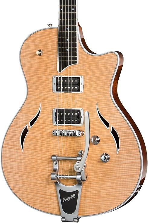 Taylor T3/B semi-hollowbody con Bigsby guitarra eléctrica
