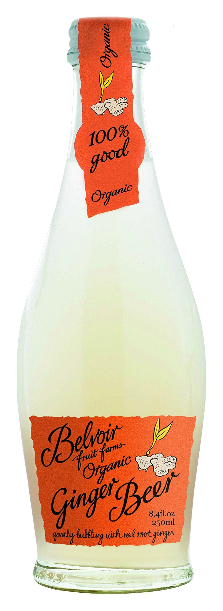 Belvoir Lemonade, Ginger Beer, 8.4 Ounce (Pack of 24) by Belvoir