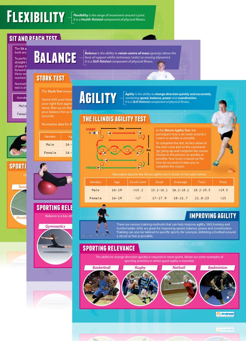 Components of Physical Fitness Poster Set| Set of 12 Components of Physical Fitness Wall Charts/Posters In Laminated Paper (large 33.5'' X 24'')