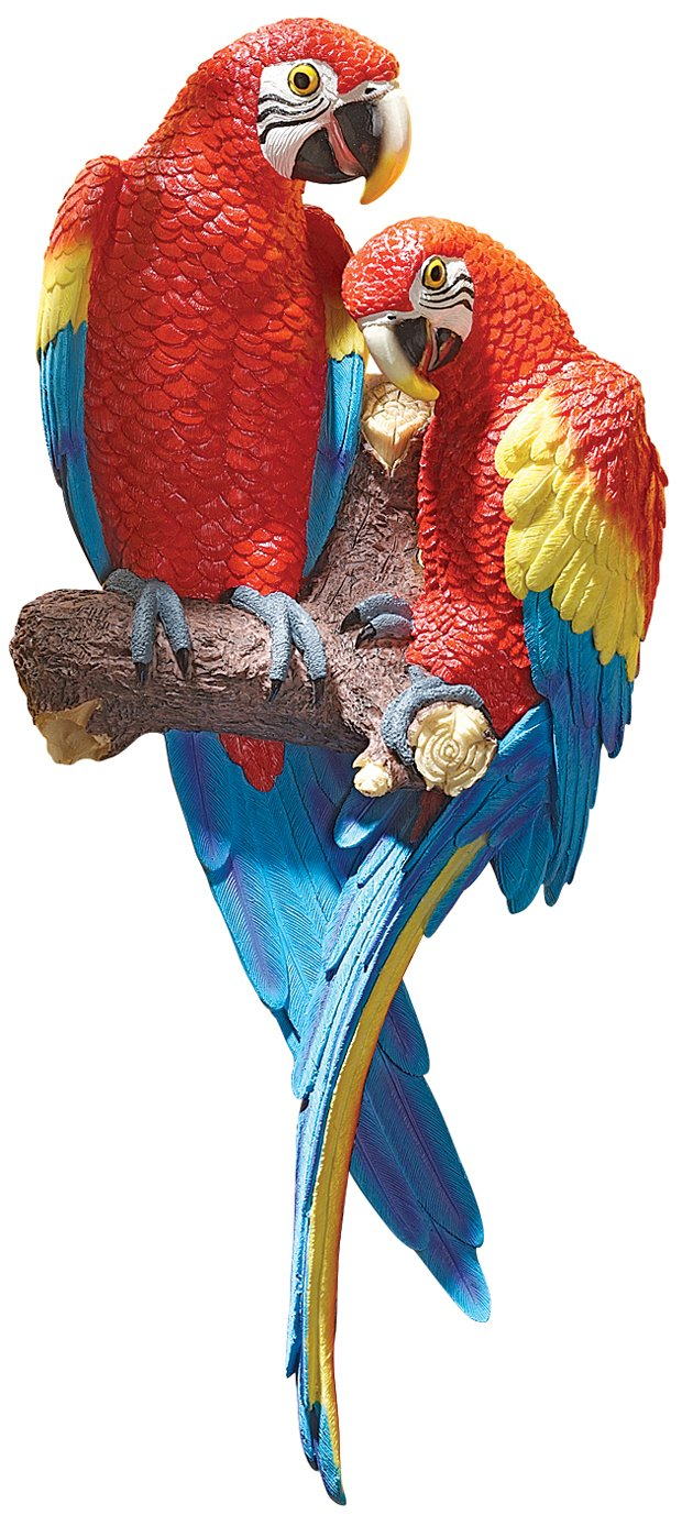 Amazon design toscano tropical scarlet macaws wall sculpture amazon design toscano tropical scarlet macaws wall sculpture home kitchen amipublicfo Images