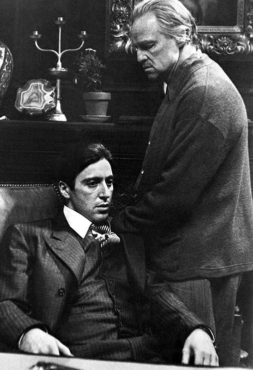 Amazon.com: Cartoon world The Godfather Poster, Vito and Michael Corleone,  Father and Son, Italian, Gangster, Mafia, Al Pacino, Marlon Brando 20x30':  Posters & Prints