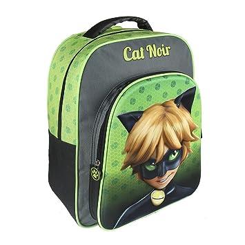 Cerdá 3D Cat Noir Mochila Infantil, 41 cm, Verde: Amazon.es: Juguetes y juegos