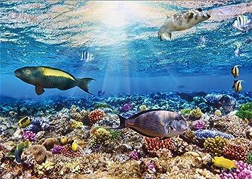 YongFoto 1,5x1m fondo submarino del mundo acuario fondos 3d para fotografía peces coral azul