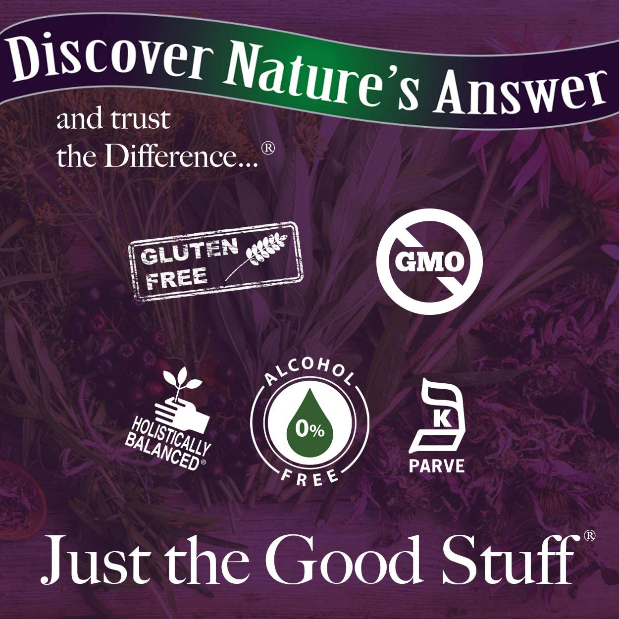Nature's Answer's Alcohol Free Black Cohosh Root 1 Fl Oz: Health & Personal Care