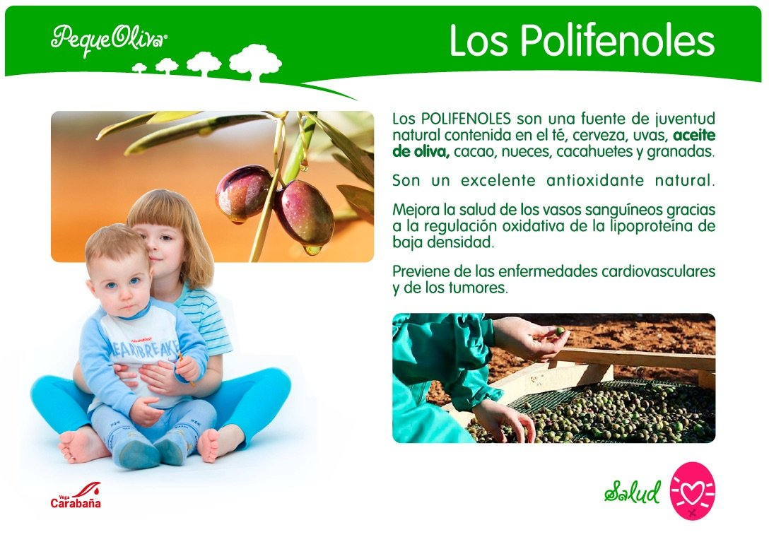 Amazon.com : Peque Oliva, New From Spain, the First Olive Oil Just for Kids, 8.5 Ounces : Grocery & Gourmet Food