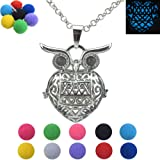 Amazon Price History for:Owl Locket Necklace for Gift, Mom, Dad, Birthday, Girl, Boy, Kid Animals Party Charms, Cage, Box