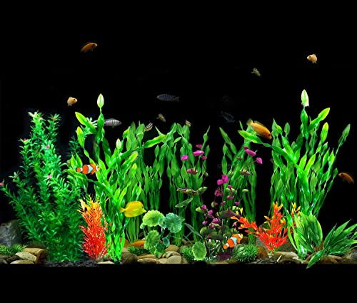 Silk-Aquarium-Plants-buying-guide