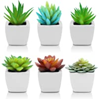 Pack of 6 - Fake Succulents Artificial Plants for Home Decor- Fake Succulent Plants - Ceramic White Potted Succulents…