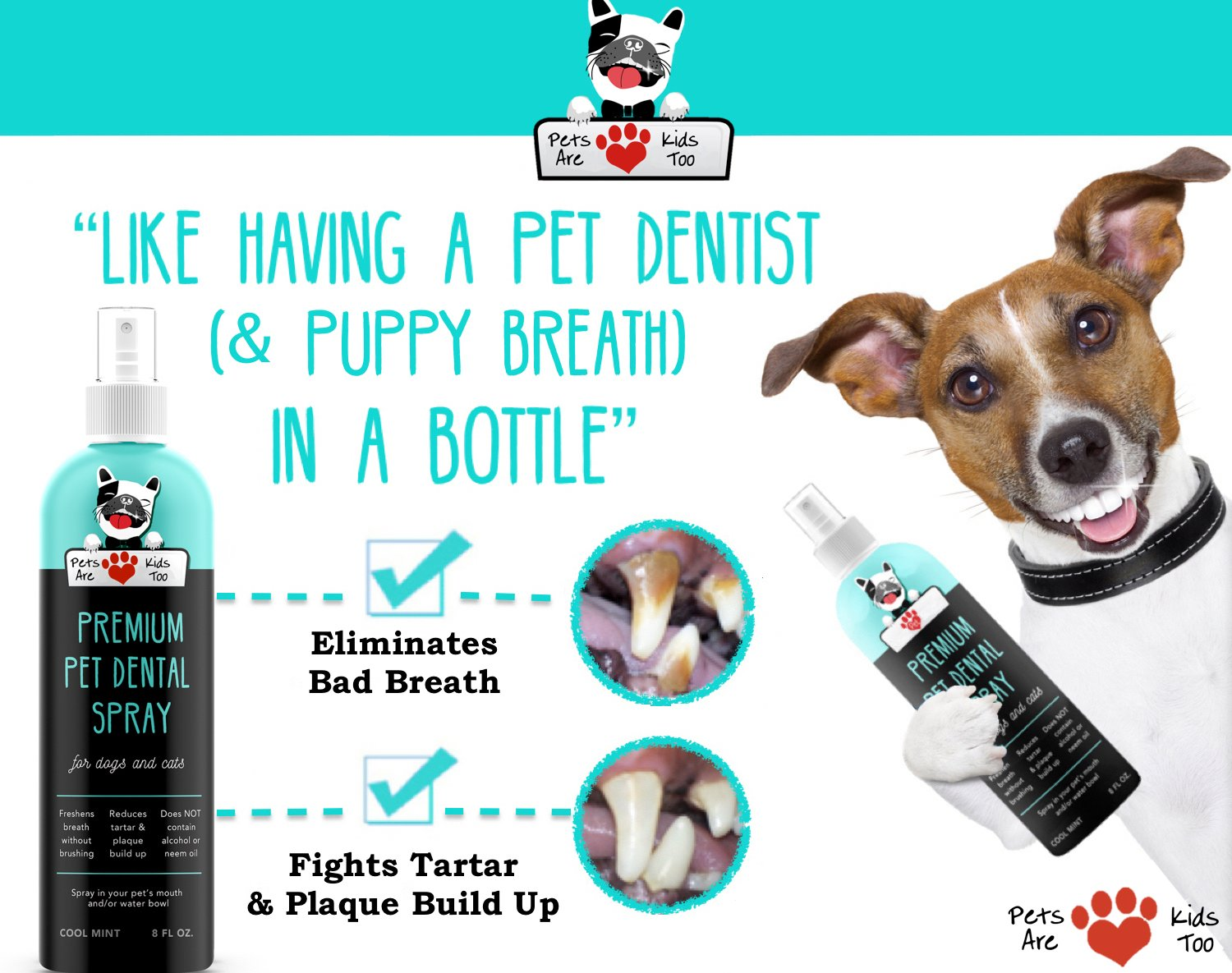 Amazon premium pet dental spray large 8oz best way to amazon premium pet dental spray large 8oz best way to eliminate bad dog breath bad cat breath naturally fights plaque tartar gum disease solutioingenieria