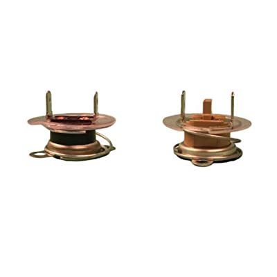 Atwood 91873 Pilot Water Heater Replacement Parts - Thermostat/E.C.O. 110 VAC: Automotive