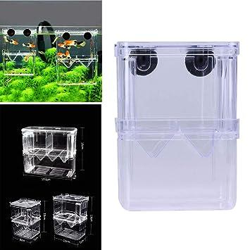 JXJ: Caja Doble para incubación de Pesca, Caja de Aislamiento, Accesorios para Acuario: Amazon.es: Productos para mascotas