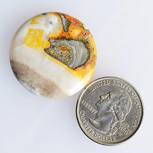 Smooth Polished Gemstone 23099 Round Shape Cabochon Flat Back Cabochon Natural Bumble Bee Jasper Cabochon