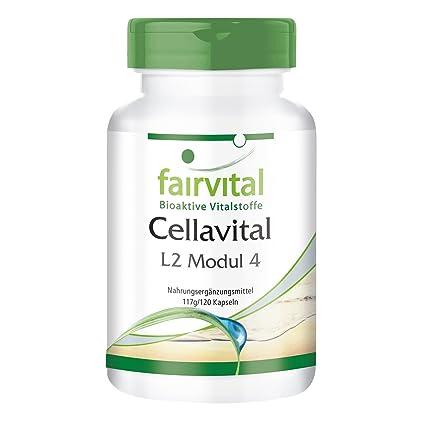Cellavital - para 1 mes - Alta dosificación - 120 cápsulas - Complejo antioxidantes con acetil