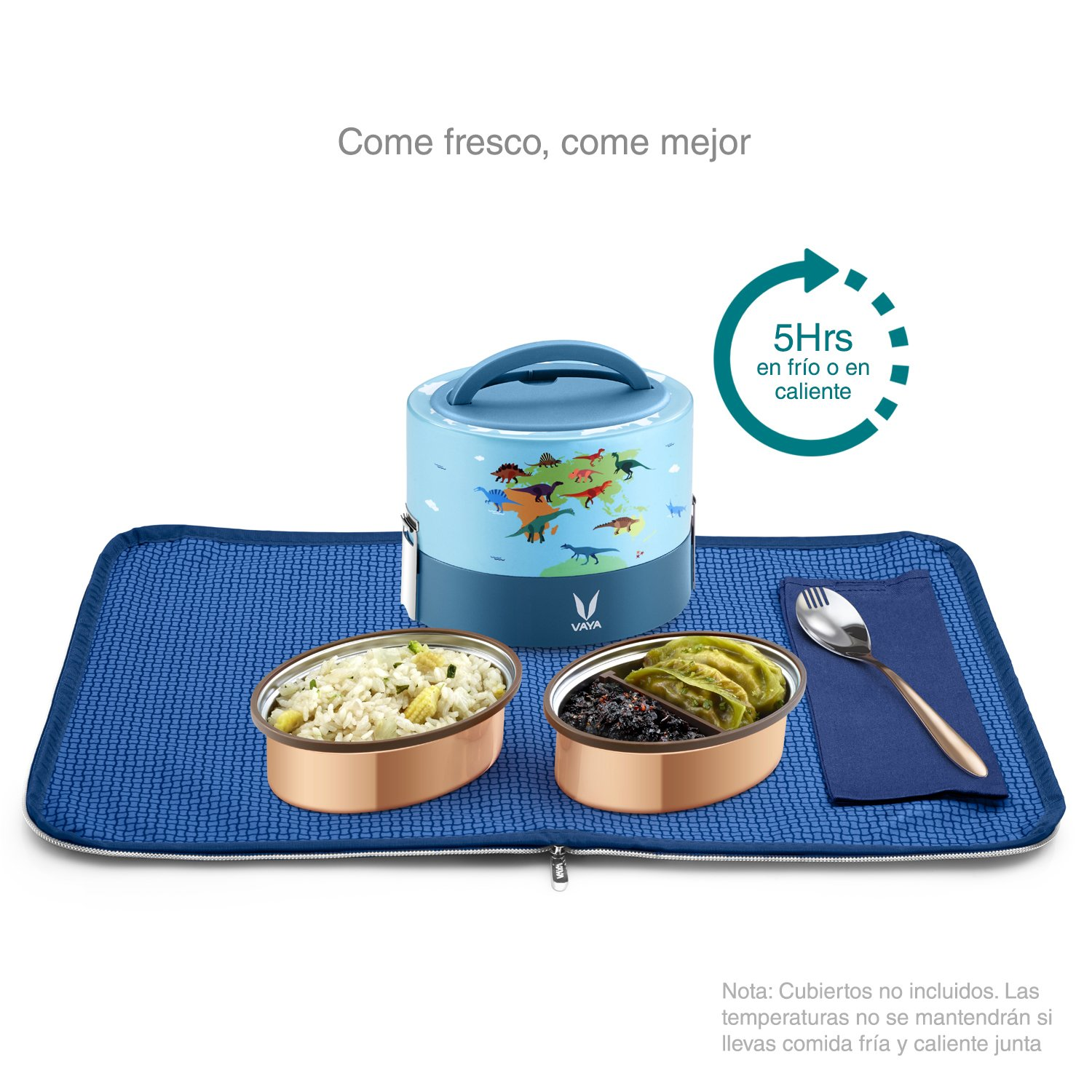 Amazon.com: Vaya Tyffyn 600 Insulated Lunch Box With Bagmat-Stainless Steel Leak-Resistant Food Storage Container- 100% BPA Free, Eco-Friendly & Reusable ...