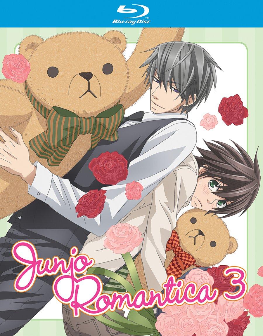 Amazon.com: Junjo Romantica Season 3- Blu-ray Collection (Junjou Romantica):  -, Chiaki Kon: Movies & TV