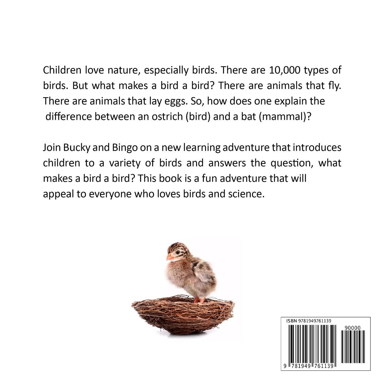 Buy What Makes a Bird a Bird? (Animal Classes) Book Online