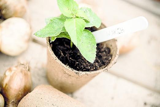 skycabin 8/cm Fibre 2/Pots de Fleurs Jardin Plantation biod/égradable Fibre semis Pots Ronds Lot DE 48