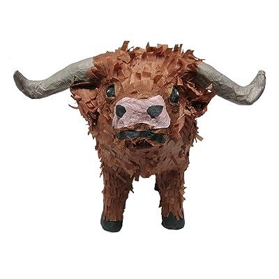 Pinatas 3D Western Texas Longhorn: Toys & Games