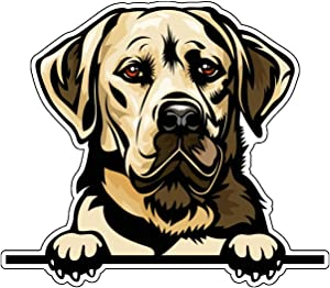 Yellow Lab Vinyl Sticker Decal - Labrador Retriever Sticker, for Tumblers, Laptops, Car Windows - Dog Owner Gift