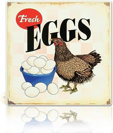 Amazon.com: M-Mount - Letrero vintage de huevos frescos para ...