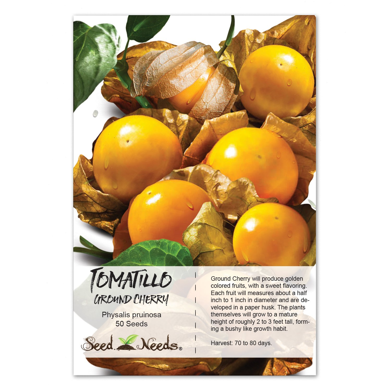Amazon Package Of 50 Seeds Ground Cherry Tomatillo Physalis