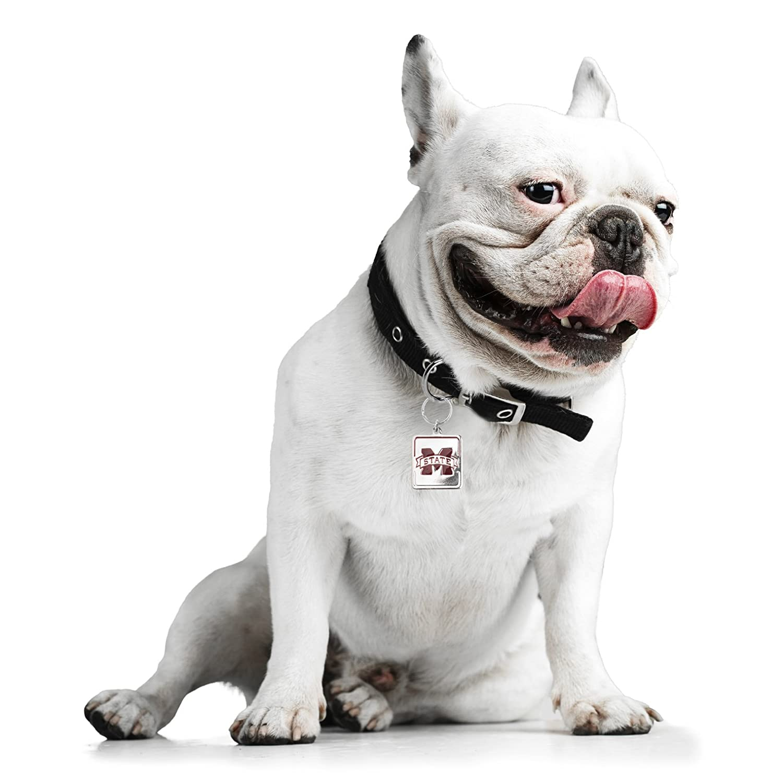 NCAA Pet Collar Charm