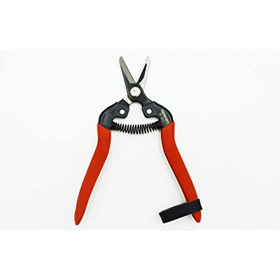 Zenport H301 Harvest Shear, Short Straight Carbon Steel Blade : Hedge Shears : Garden & Outdoor