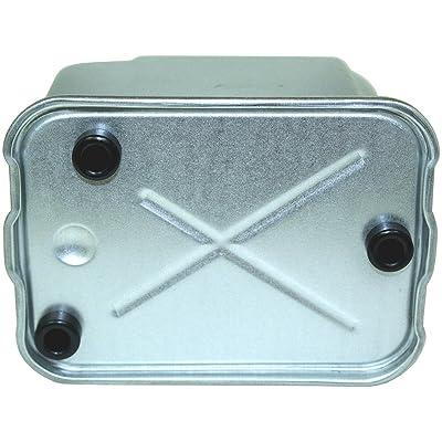 Luber-finer LFF1129 Heavy Duty Fuel Filter: Automotive