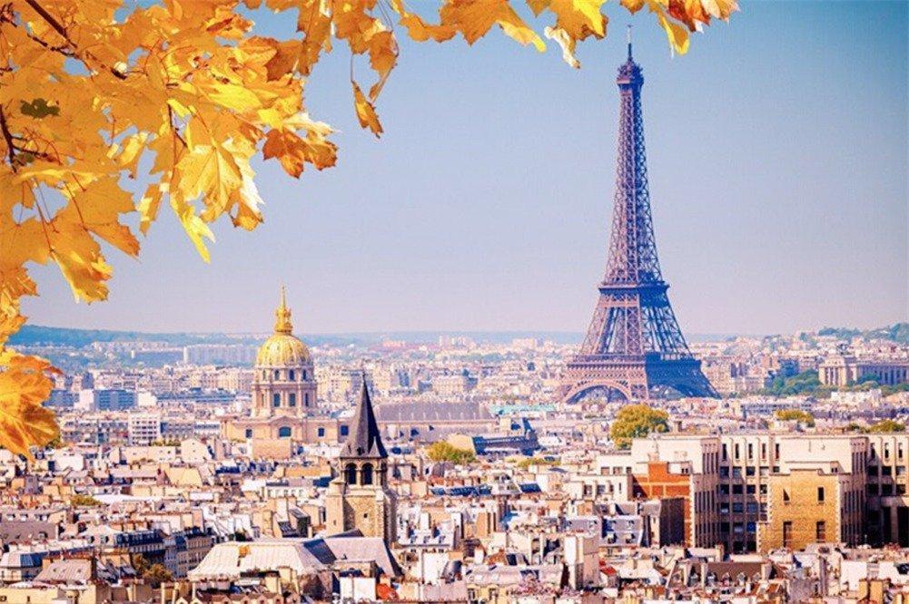【オープニング 大放出セール】 DDTOP 1000ピース ジグソーパズル 木製 知能ゲーム 写真 写真 モザイク フランス DDTOP パリ エッフェル塔 メープルリーフ 景観 風景 ジグソーパズル B07HCTB7RF, ゴテンバシ:0a705ebe --- a0267596.xsph.ru