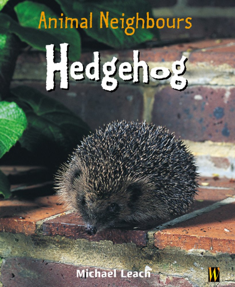 Animal Neighbours: Hedgehog pdf epub