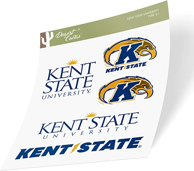 Kent State University KSU Golden Flashes Flag