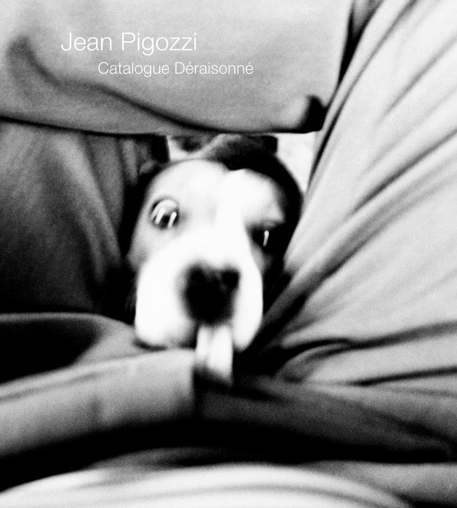 Download Jean Pigozzi: Catalogue Déraisonné pdf epub