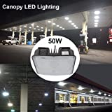 LED Canopy Lights for Gas Station, JESLED Outdoor
