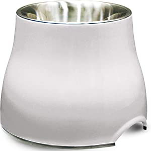 Dogit Elevated Dog Bowl, Stainless Steel Dog Food and Water Bowl for Small Dogs