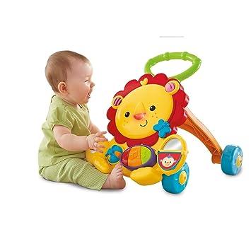 Fisher-Price Everything Baby Y9854 andador Multicolor ...