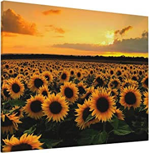 Painting Sunflower Wall art Decor Landscape Pictures Flower Field Unframed Canvas Prints Modern Artwork Wall Art Ready to Hang Decoration for Office Home Living Room Bedroom 16x20 Inch