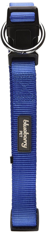 Blueberry Pet Collier pour chien Robuste/classique DCLS10L