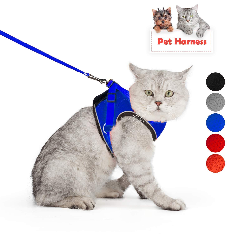 Coriver Conjunto de arn/és y Correa para Gato S,Blue Resistente al Escape sin estrangulamiento para Mascotas Chaleco para Perros Chaqueta con Correas para el Pecho Reflectante para Gatos