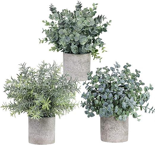 Amazon Com Winlyn Set Of 3 Mini Potted Artificial Eucalyptus