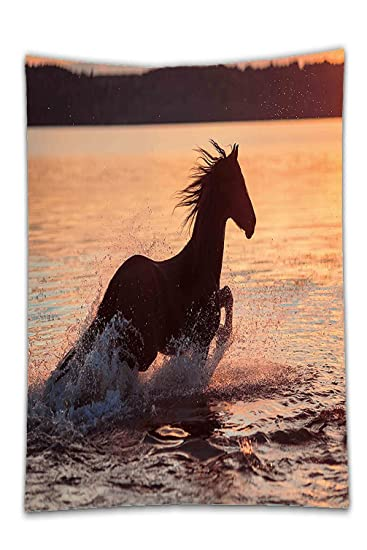 Interestlee Satin Drill TableclothEquestrian Horse Sea At Sunset Time Horizon Speed Exotic Nature Animal