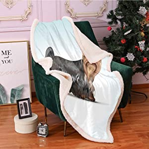 """SeptSonne Yorkie Sherpa Fleece Blanket 40""""X50"""",Digital Depiction of Yorkshire Terrier with a Bow on Head Meshed Colors Computer Art Digital Printing Blanket,Sherpa Blankets(Multicolor)"""