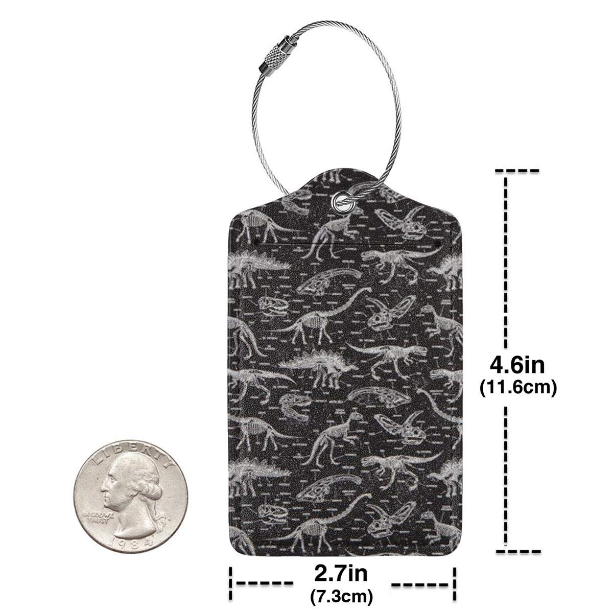 GoldK Fossil Tyrannosaurus Leather Luggage Tags Baggage Bag Instrument Tag Travel Labels Accessories with Privacy Cover