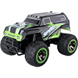 Blexy RC Car 1/18 Remote Control Vehicle 2.4Ghz Off-Road Rock Crawler All Terrain Stunt Racing Electric Monster Truck for Kids