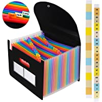Expanding Files Folder Organizer 24 Pockets/Expandable Accordian File Organizer Bag A4/Letter Size Plastic Filing Box, Accordion Document/Coupon/Receipt Organizer with Colored Labels for Office/School