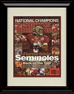 NCAA Florida State Seminoles Doak Campbell Stadium Photo 12.5 x 15.5 Framed