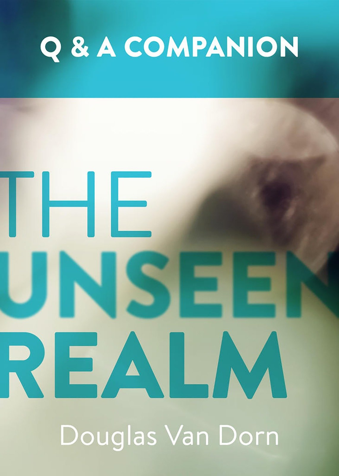 The Unseen Realm: A Question & Answer Companion pdf