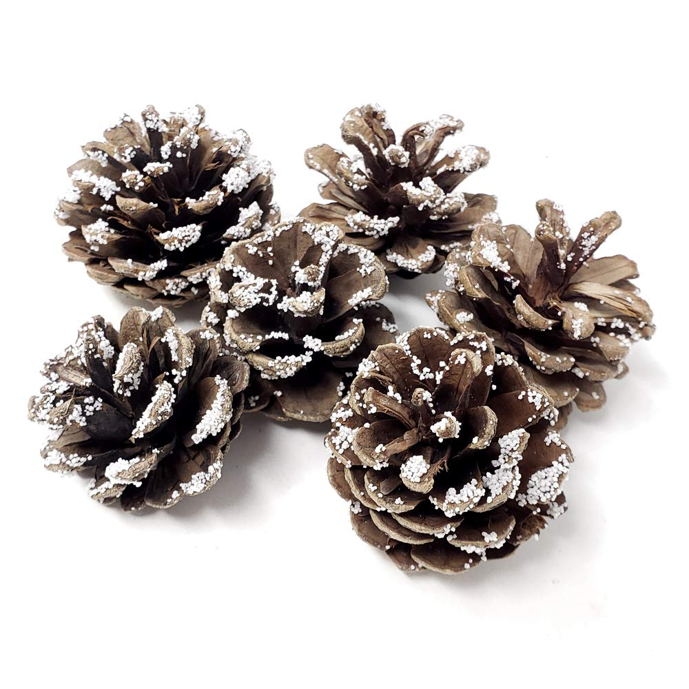 Homeford Decorative Ice Austrian Pine Cones, 1-1/2-Inch, 6-Count by Homeford (Image #1)