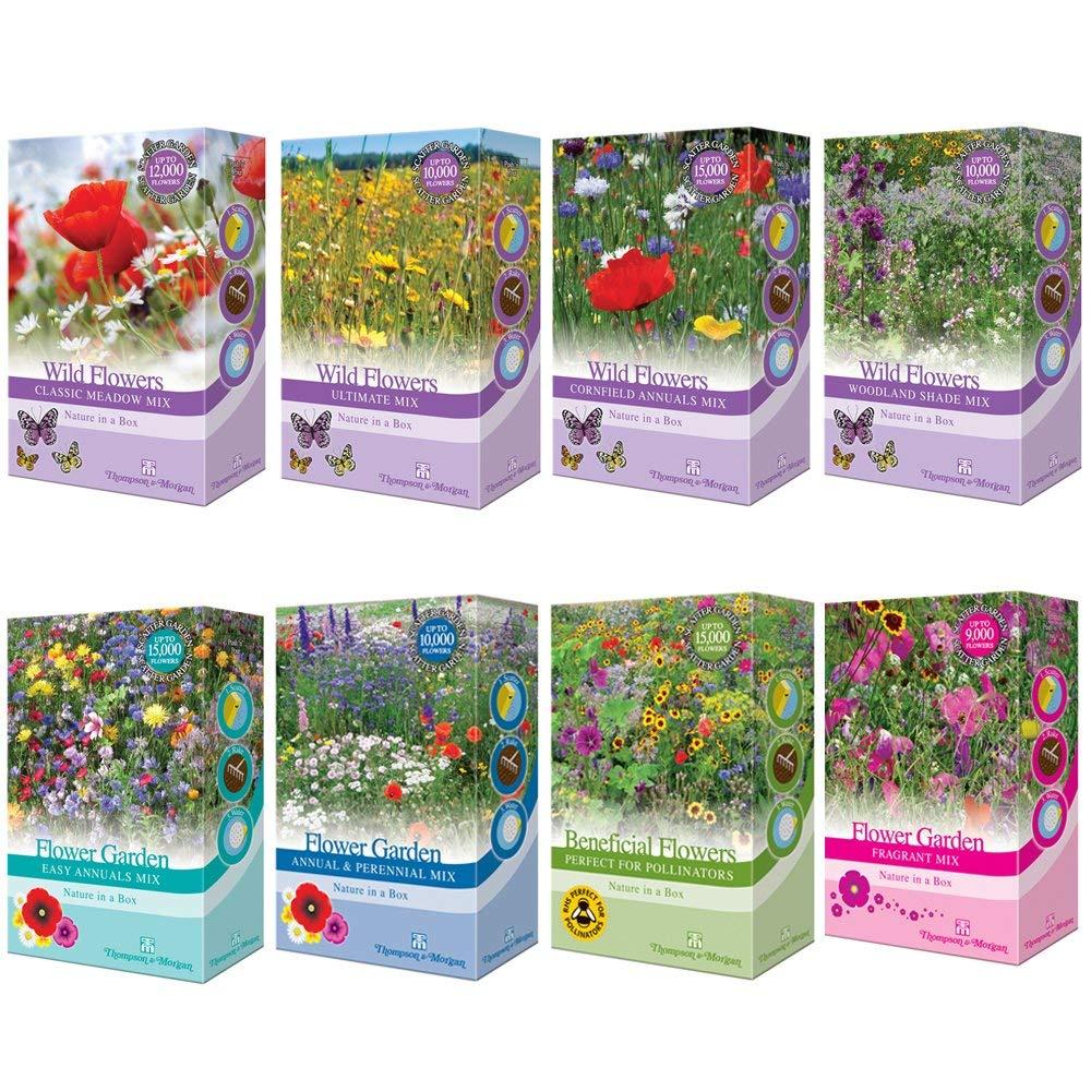 Flores Silvestres Anual Maizal Plantas Jard/ín Semilla Cultive Flores Anciano /& Hierba 1 X 15g Surtido Paquete por Thompson/&Morgan